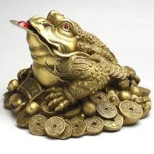 Žaba Bogi 2