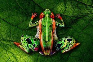 Žaba od tri žene