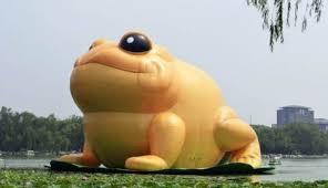 žuta žabica rokfeler fond